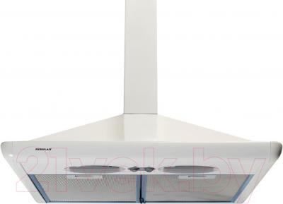 Вытяжка купольная Europlast H300AF (50, White) - общий вид