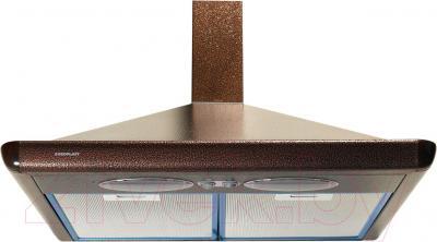 Вытяжка купольная Europlast H300AFB (50, коричневый) - общий вид