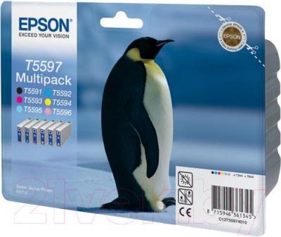 Картридж Epson C13T55974010 - общий вид