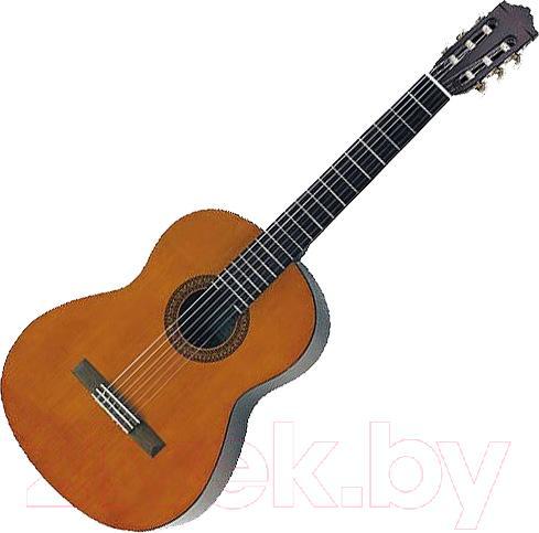 Акустическая гитара Jay Turser