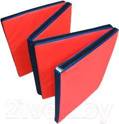 Гимнастический мат Зубрава Трансформер МТТ0618004 (сине-красный) - общий вид