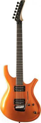 Электрогитара Parker Guitar PDF70TNG - общий вид