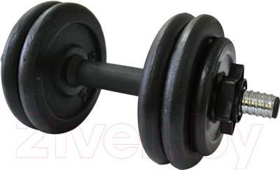 Гантель разборная Sundays Fitness 12.5kg