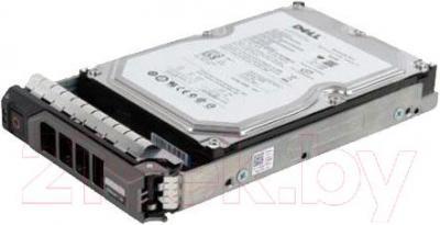 Жесткий диск Dell 400-20613 - общий вид