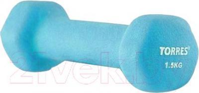 Гантель Torres PL500115 (голубой) - общий вид