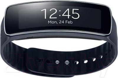 Фитнес-трекер Samsung Gear Fit SM-R350 (Black) - общий вид