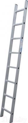 Приставная лестница Tarko 01114 - общий вид