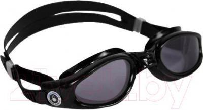 Очки для плавания Aqua Sphere Kaiman 171100 (черный) - общий вид