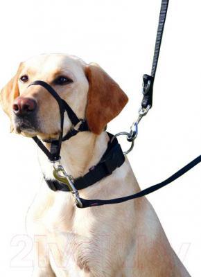 Намордник с ошейником Trixie Top Trainer Training Harness 13005 (L-XL) - общий вид