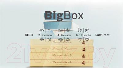 Холодильник с морозильником Bosch KGN39VL10R - контейнер BigBox