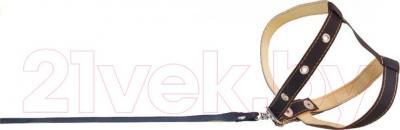 Шлея с поводком Collar 05441 (черный) - общий вид