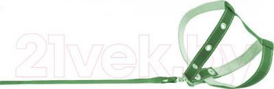 Шлея с поводком Collar 05445 (зеленый) - общий вид