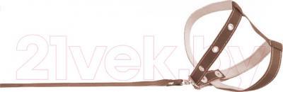 Шлея с поводком Collar 05446 (коричневый) - общий вид