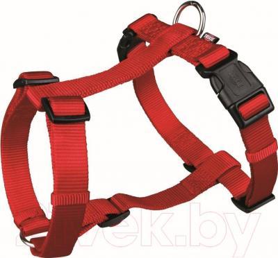 Шлея Trixie Premium H-harness 20323 (XS-S, красный) - общий вид