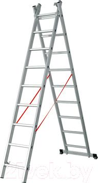 Лестница-стремянка Startul ST9710-09 - общий вид