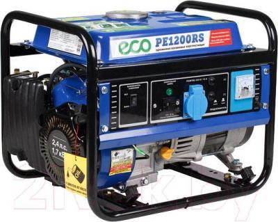 Электростанция сварочная Eco PE 1200 RS - общий вид