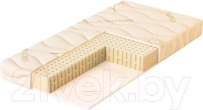 Детский матрас Плитекс Organic Comfort ОРГ-01/1 - общий вид