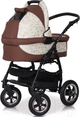 Детская универсальная коляска Expander Katrin 2 в 1 (104) - окошко