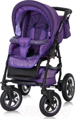 Детская универсальная коляска Riko Carmen 10 - прогулочная
