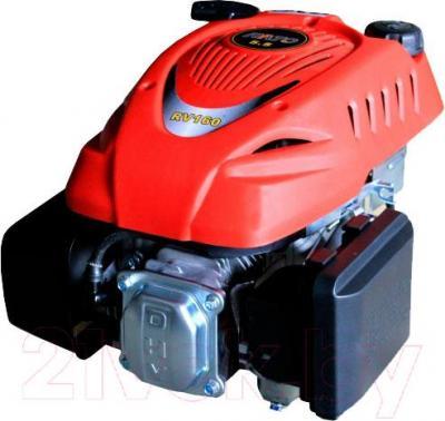 Двигатель бензиновый Rato RV160STYPE - общий вид