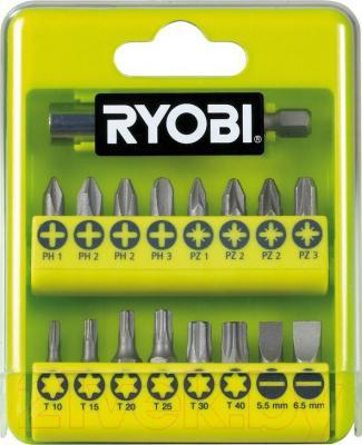 Набор оснастки Ryobi RAK17SD (5132002550) - общий вид