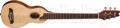 Акустическая гитара Washburn RO10 Rover - общий вид