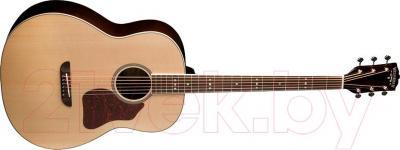Электроакустическая гитара Washburn LSB768SEK - общий вид
