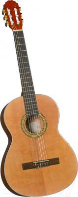 Акустическая гитара Catala CC-24 - общий вид
