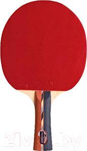 Ракетка для настольного тенниса Motion Partner MP402 - общий вид