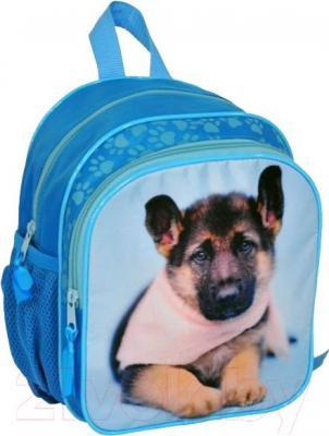 Детский рюкзак Paso RAE-309 - общий вид