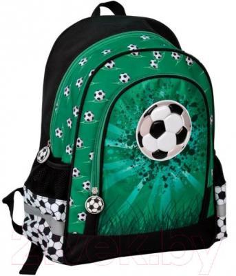 Школьный рюкзак Paso 14-122FZ - общий вид