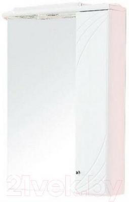 Шкаф с зеркалом для ванной Акватон Пинта 60М (1A013202PT01R) - общий вид