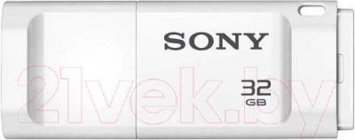 Usb flash накопитель Sony MicroVault Entry 32GB (USM32XW) - общий вид