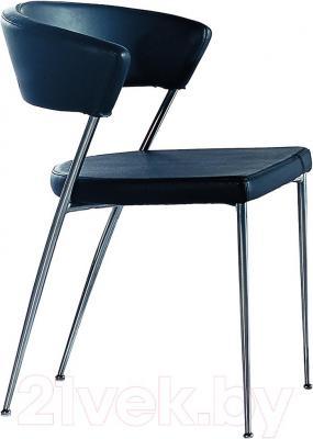 Стул Мебельные компоненты Foster (чёрный)