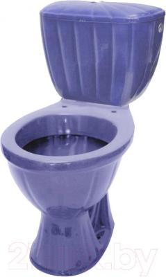 Унитаз напольный Colombo Орхидея R (чаша+сиденье, бело-фиолетовый) - общий вид