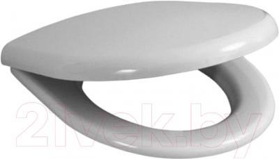 Сиденье для унитаза Roca America А801490004 (белое)
