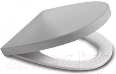 Сиденье для унитаза Roca Khroma А801652F1T (серебристое)