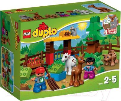 Конструктор Lego Duplo Лесные животные 10582 - упаковка