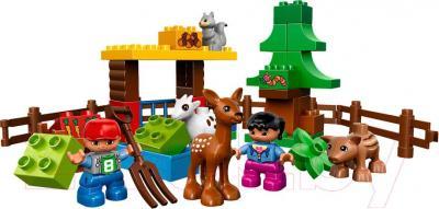 Конструктор Lego Duplo Лесные животные 10582 - общий вид