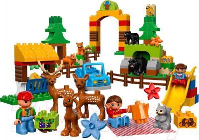 Конструктор Lego Duplo Лесной заповедник 10584 - общий вид
