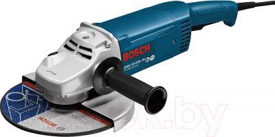 Профессиональная болгарка Bosch GWS 22-230 JH (0.601.882.203) - общий вид