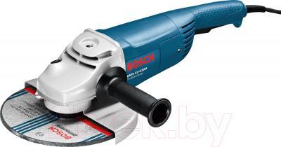 Профессиональная болгарка Bosch GWS 22-230 H (0.601.882.103) - общий вид