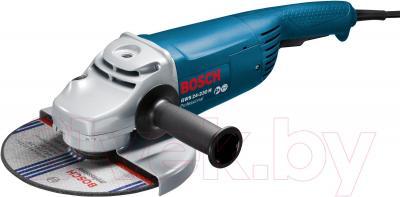 Профессиональная болгарка Bosch GWS 24-230 H Professional (0.601.884.103) - общий вид