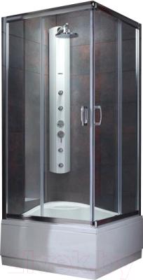 Душевой уголок Radaway Premium Plus C900 (30451-01-06N)