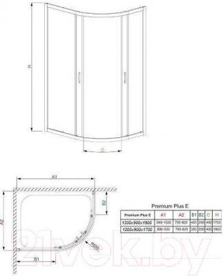 Стенка+дверь душевой кабины Radaway Premium Plus E1700 (30483-01-01N)