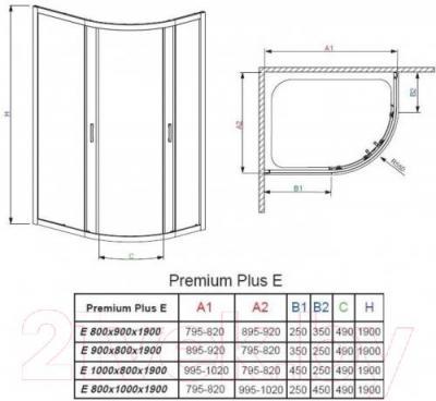 Стенка+дверь душевой кабины Radaway Premium Plus E1900 (30491-01-01N)