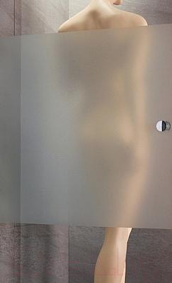 Дверь душевой кабины Radaway EOS DWD 100 (37723-01-12N) - стекло матовое+прозрачное