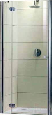 Дверь душевой кабины Radaway Torrenta DWJ 120/L (31930-01-01N)