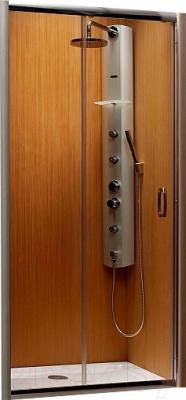 Душевая дверь Radaway Premium Plus DWJ (33303-01-01N)