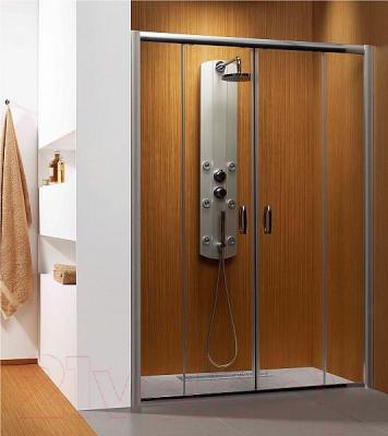 Душевая дверь Radaway Premium Plus DWD (33373-01-01N)